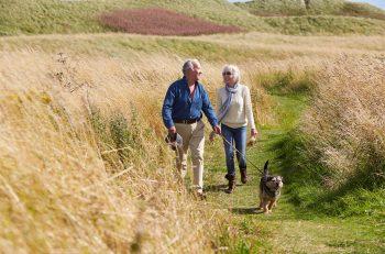 Pension Guide